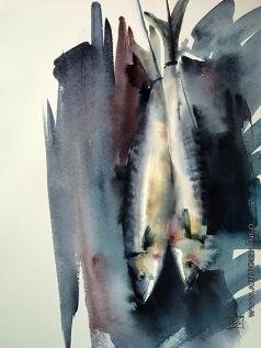 Канцерева В. Е. Рыбы