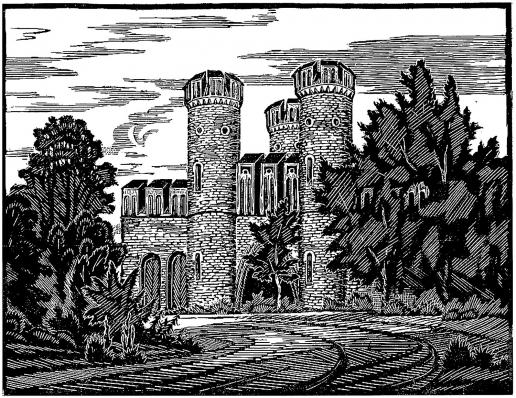 Шевченко А. А. Башни. Фридрихсбургские ворота