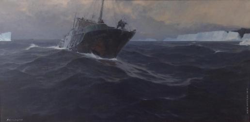 Скитальцев Е. Н. На просторах Антарктики