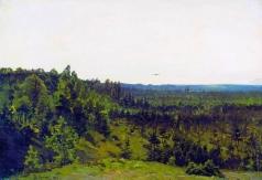 Клевер Ю. Ю. Мелколесье