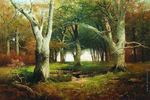Клевер Ю. Ю. Старые деревья в лесу