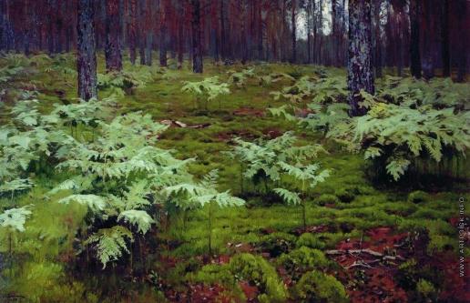 Левитан И. И. Папоротники в лесу