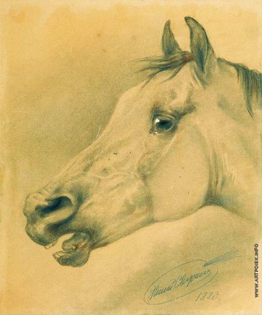 Сверчков Н. Е. Голова лошади