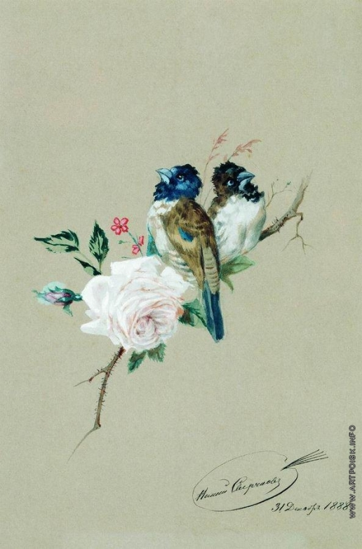Сверчков Н. Е. Две птицы на розе