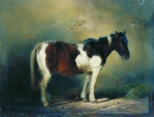 Сверчков Н. Е. Пегая лошадь