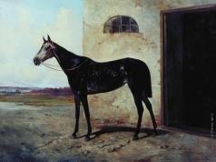 Сверчков Н. Е. Серая лошадь