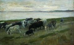 Степанов А. С. Стадо овец