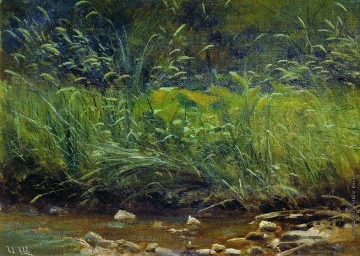 Шишкин И. И. Берег пруда. 1880-