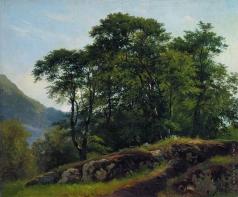 Шишкин И. И. Буковый лес в Швейцарии