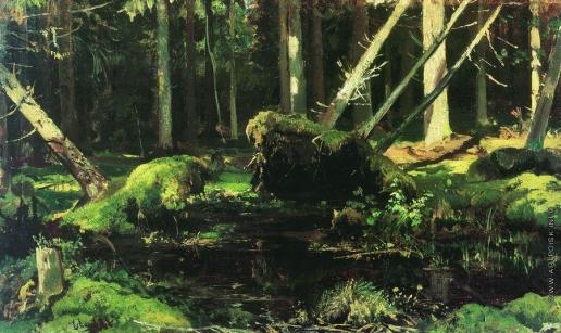 Шишкин И. И. Бурелом. 1886-