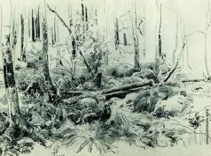 Шишкин И. И. В лесных зарослях