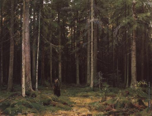 Шишкин И. И. В лесу графини Мордвиновой. Петергоф
