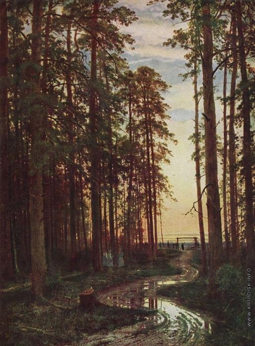 Шишкин И. И. Вечер в сосновом лесу