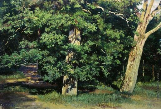 Шишкин И. И. Деревья
