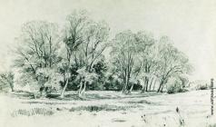Шишкин И. И. Деревья в поле. Братцево