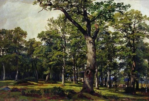 Шишкин И. И. Дубовый лес