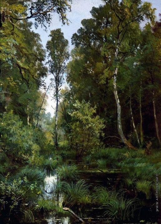 Шишкин И. И. Заросший пруд у опушки леса. Сиверская