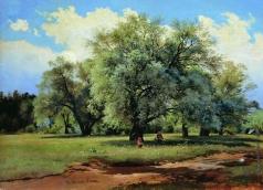 Шишкин И. И. Ивы, освещенные солнцем