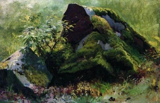 Шишкин И. И. Камни. 1880-