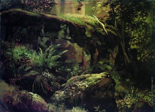 Шишкин И. И. Камни в лесу. Валаам. Между 1858 и