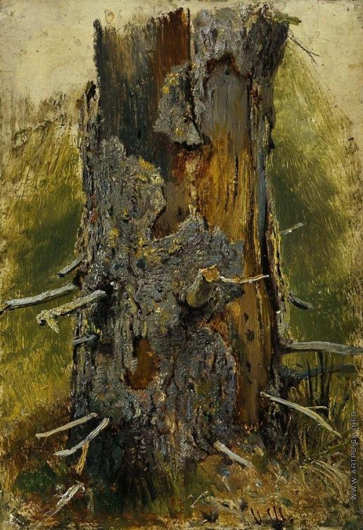 Шишкин И. И. Кора на сухом стволе. 1889-