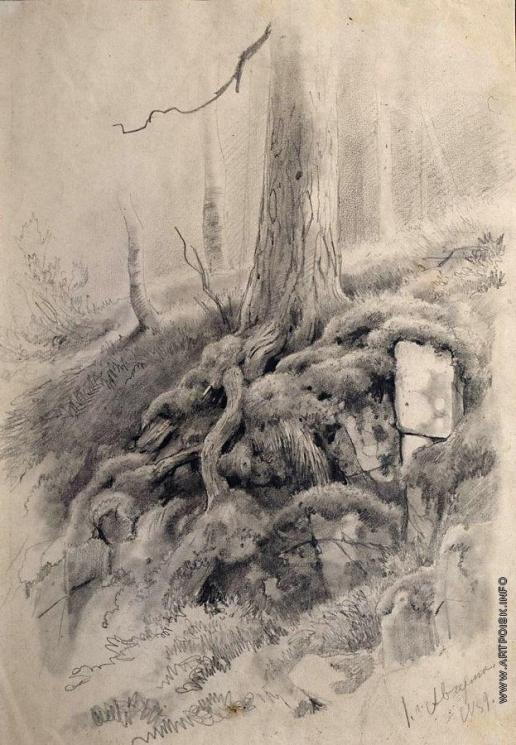 Шишкин И. И. Корни дерева