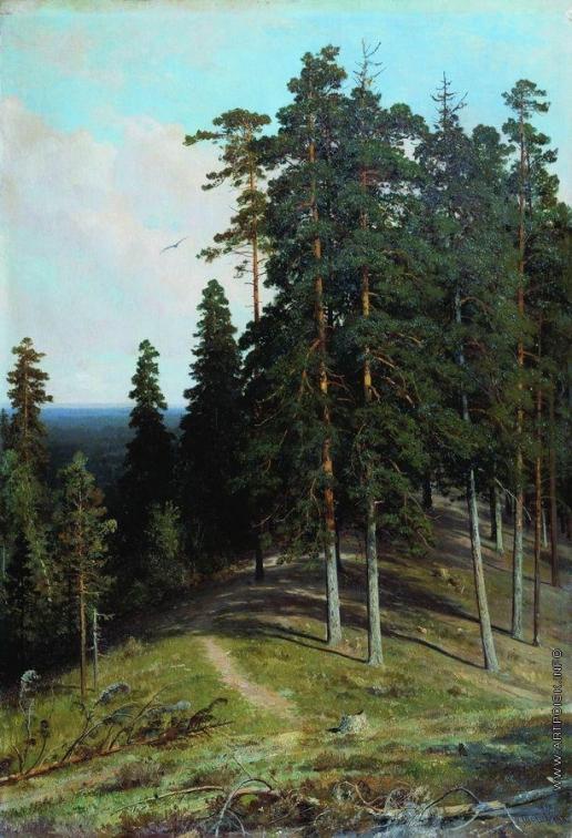 Шишкин И. И. Лес с горы