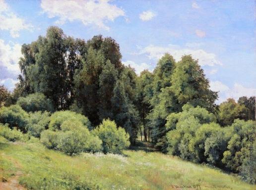 Шишкин И. И. Лесная поляна (Полянка)