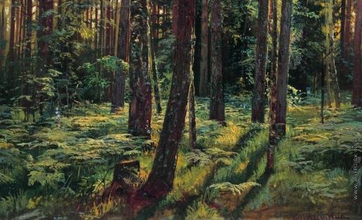 Шишкин И. И. Папоротники в лесу. Сиверская