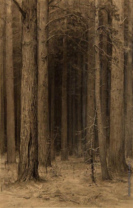 Шишкин И. И. Паутина в лесу
