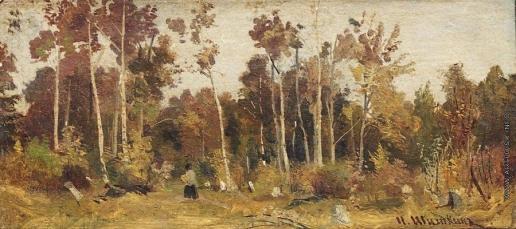 Шишкин И. И. Пейзаж. Опушка леса