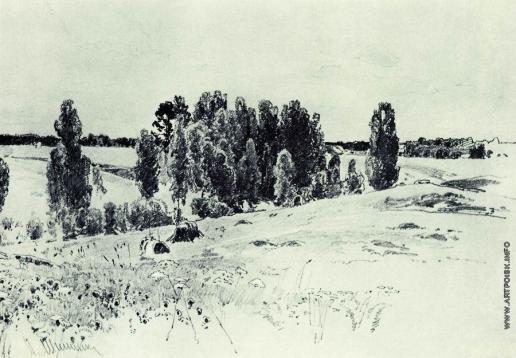 Шишкин И. И. Поля и рощи