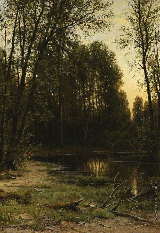 Шишкин И. И. Речная заводь в лесу. 1889-