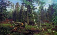 Шишкин И. И. Рубка леса
