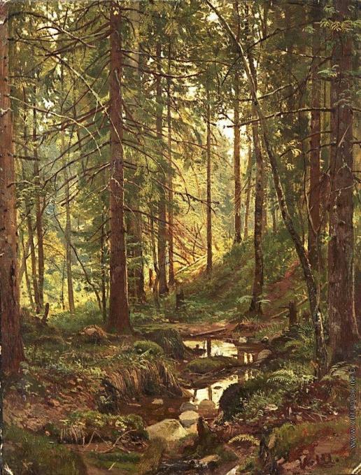 Шишкин И. И. Ручей в лесу. Сиверская