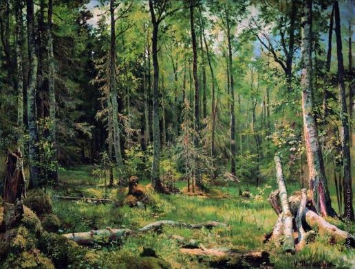 Шишкин И. И. Смешанный лес (Шмецк близ Нарвы)