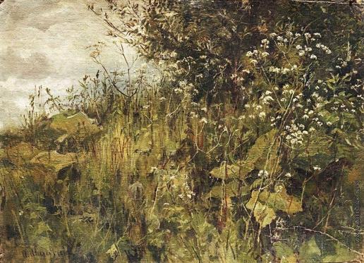 Шишкин И. И. Сныть-трава
