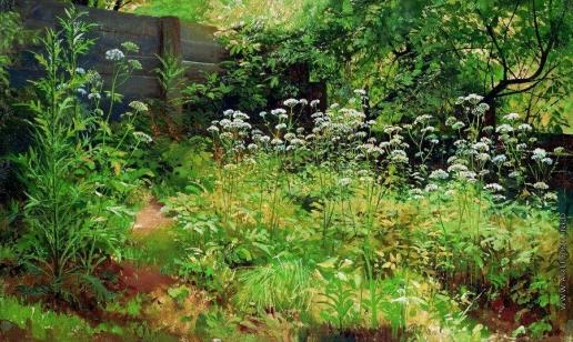 Шишкин И. И. Сныть-трава. Парголово. 1884-