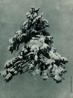 Шишкин И. И. Сосна под снегом