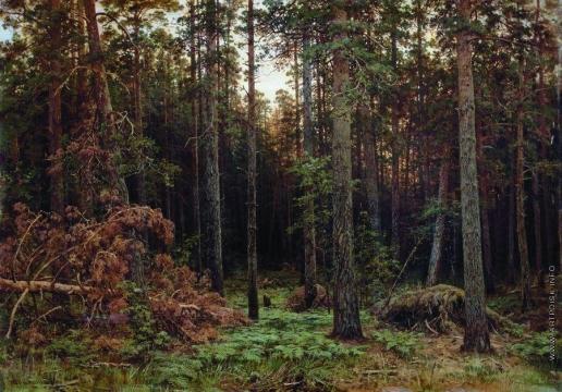 Шишкин И. И. Сосновый лес