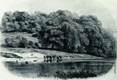 Шишкин И. И. Стадо на берегу реки