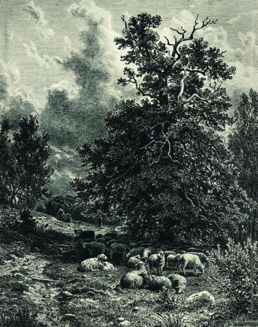 Шишкин И. И. Стадо овец на опушке леса