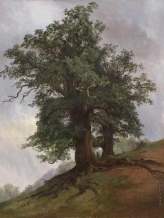 Шишкин И. И. Старый дуб