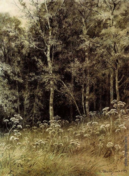 Шишкин И. И. Цветы в лесу