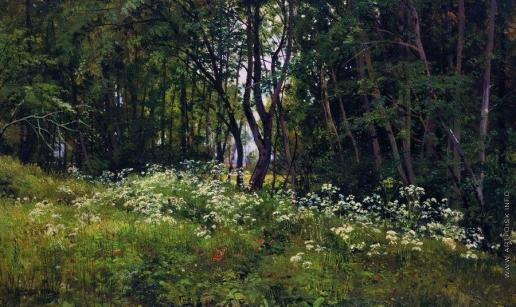 Шишкин И. И. Цветы на опушке леса