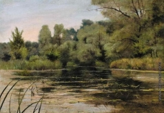 Алисов М. А. Лесное озеро
