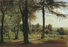 Аммон В. Ф. На опушке леса. Полдень
