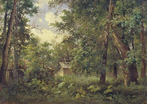 Аммон В. Ф. Летний пейзаж