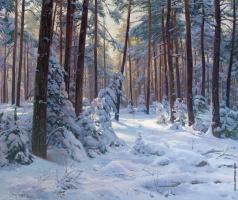 Брусилов С. А. Заснеженный лес