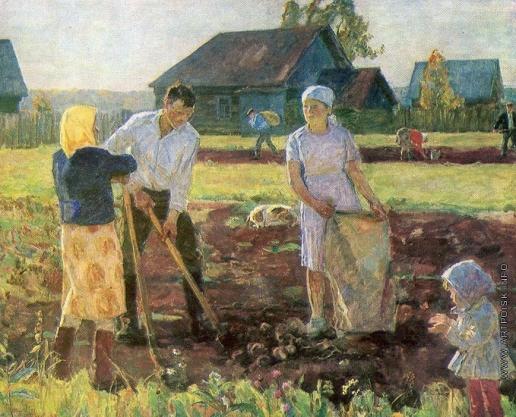 Новиков Н. Ф. Картошка